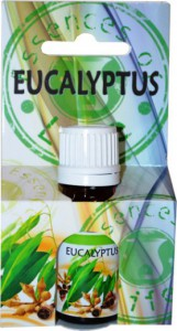 phoca_thumb_l_eucalyptus-op.jpg
